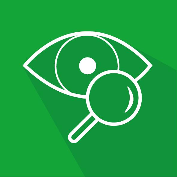 De-Looper-NDO_Visueel-scheuronderzoek